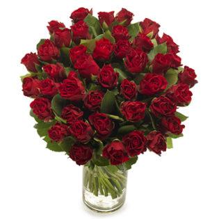 bos rode rozen groot
