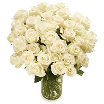 bos witte rozen groot