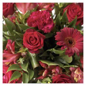 Verrassingsboeket seizoensbloemen rood