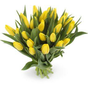 bos gele tulpen groot