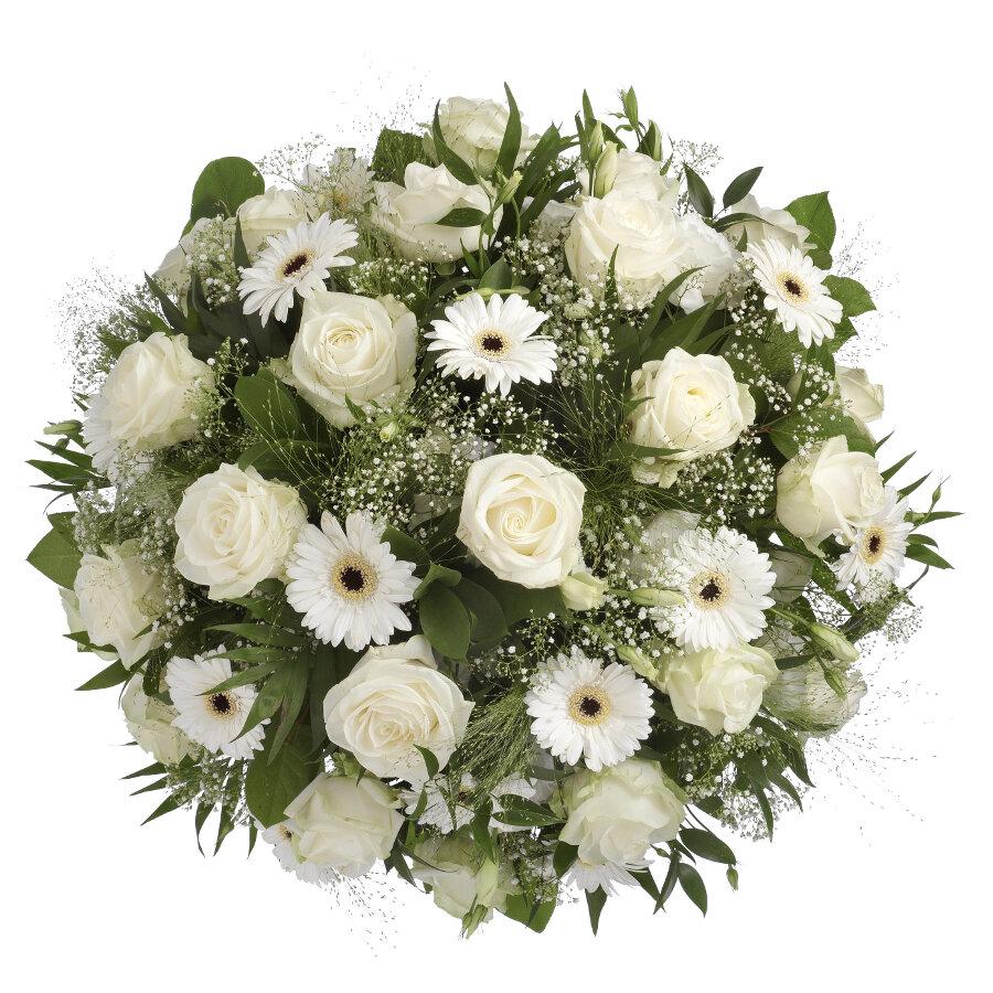 Afbeeldingsresultaat voor wit  bloemen rozen