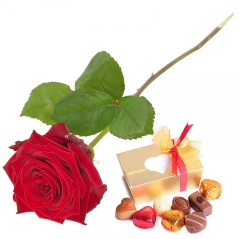 Grote Rode Roos + Belgische Bonbons